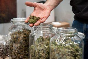 Synthetic Marijuana Possession and Distribution Defense Attorneys Passaic County, NJ