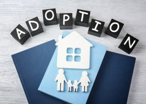 How To Adopt Step Children In New Jersey
