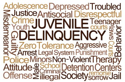 What can a juvenile offender expect in the New Jersey juvenile justice system?